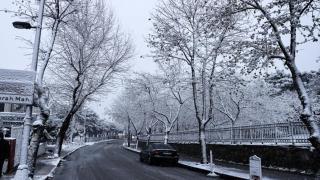 İstanbul güne kar yağışı ile başladı